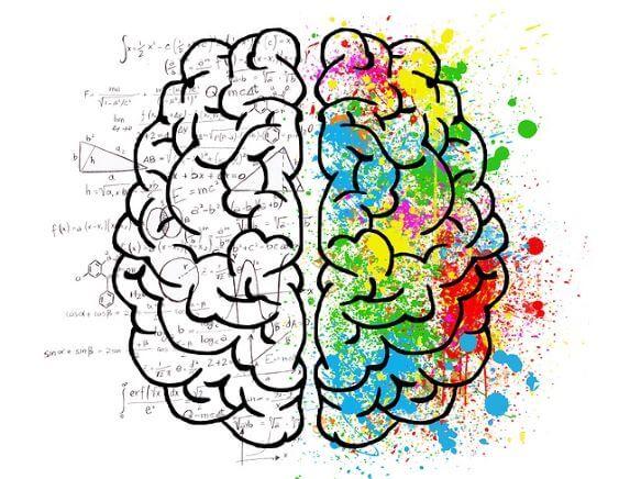 「左脳読書」と「右脳読書」の違い!使い分ける基準を一言で表すなら?